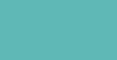 Dela Surf Trips